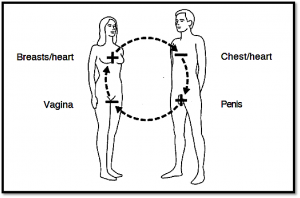 Sexual Polarity